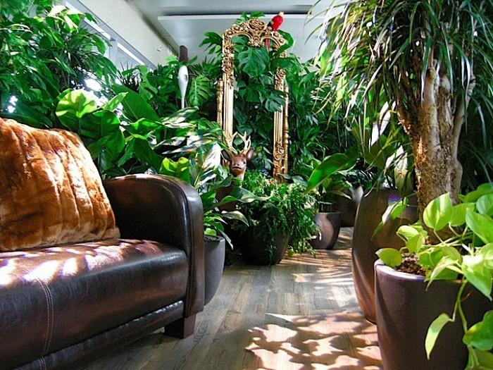 谷歌森林主题风格办公室设计效果图